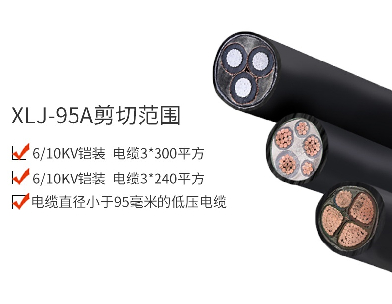 XLJ-95A推5.png